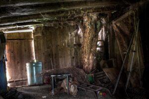 Dachboden Räumungen